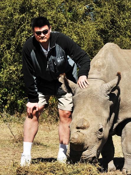 姚明探访肯尼亚野生动物保护区