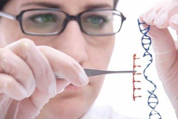 组图:英国发现智商基因:高科技!